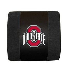 Ohio State University Lumbar Cushion