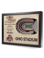 Ohio State University Stadium View 3D Wall Art