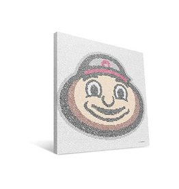 Ohio State University Typo Canvas Print