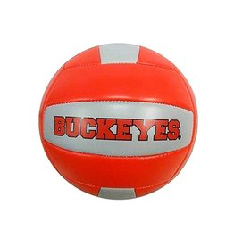 Ohio State University Volleyball