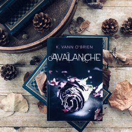 Avalanche by K Vann O'Brien