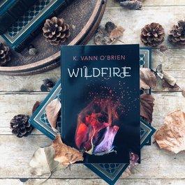 Wildfire by K Vann O'Brien