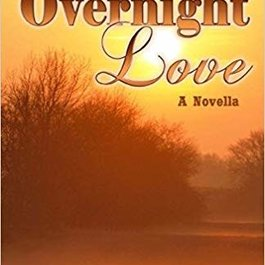 Overnight Love by Nicole Edwards