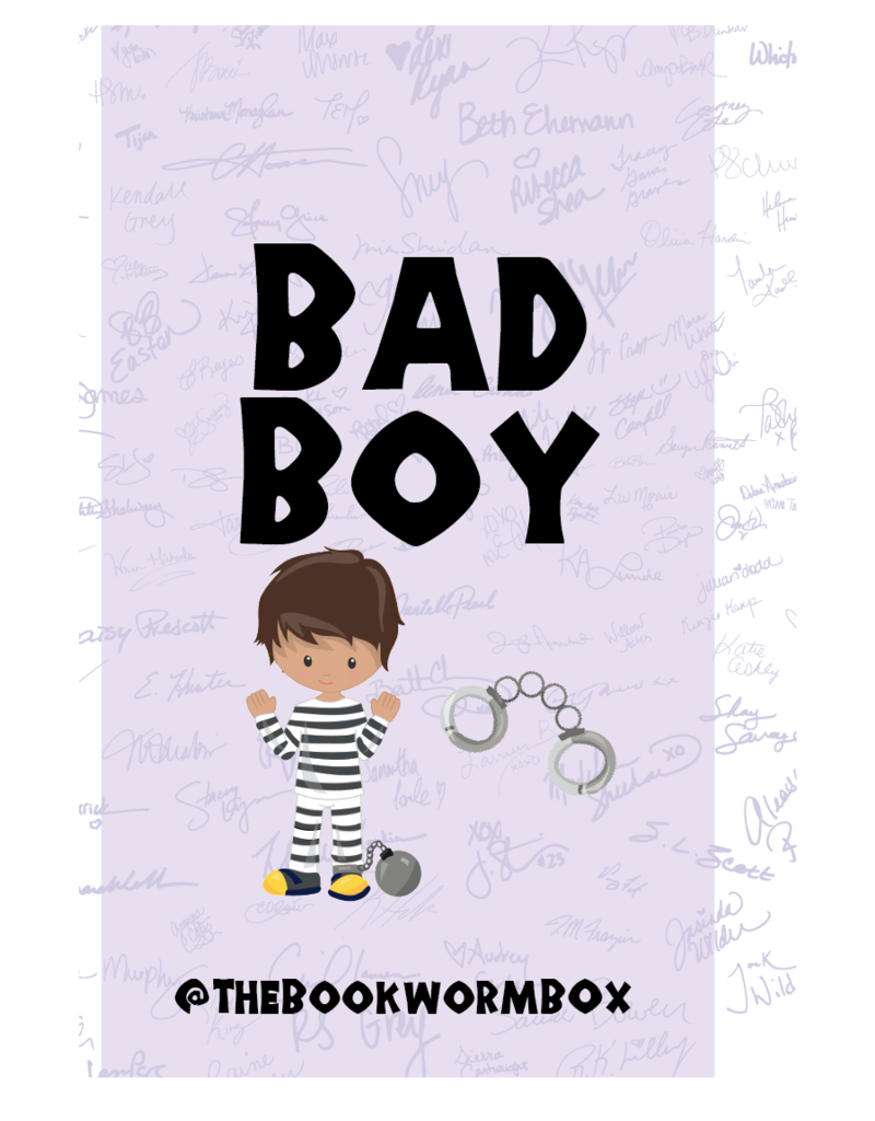 Bad Boy Grab Bag - Book Bonanza PICKUP ONLY