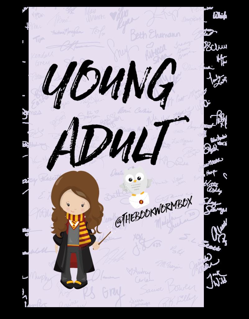 Young Adult Grab Bag - Book Bonanza PICKUP ONLY