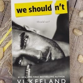 We Shouldn't by Vi Keeland