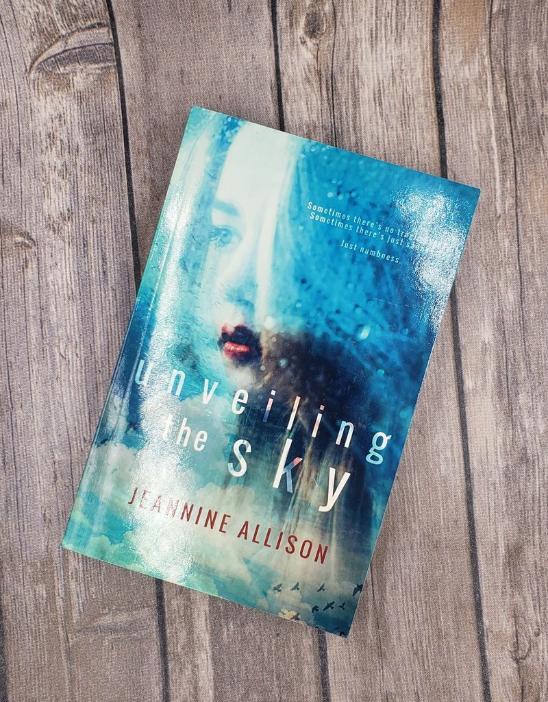 Unveiling the Sky, #1 by Jeannine Allison