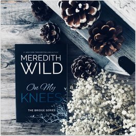 On My Knees Book 1 by Meredith Wild