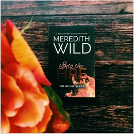 Into The Fire Book 2  by Meredith Wild