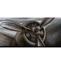 "Streamline Toile hélice avion POWERING UP 32"" X 71"""