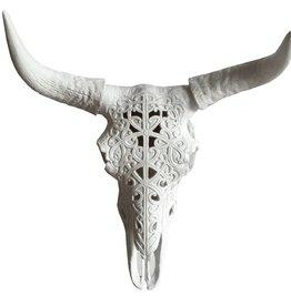 Tête de vache squelette avec cornes