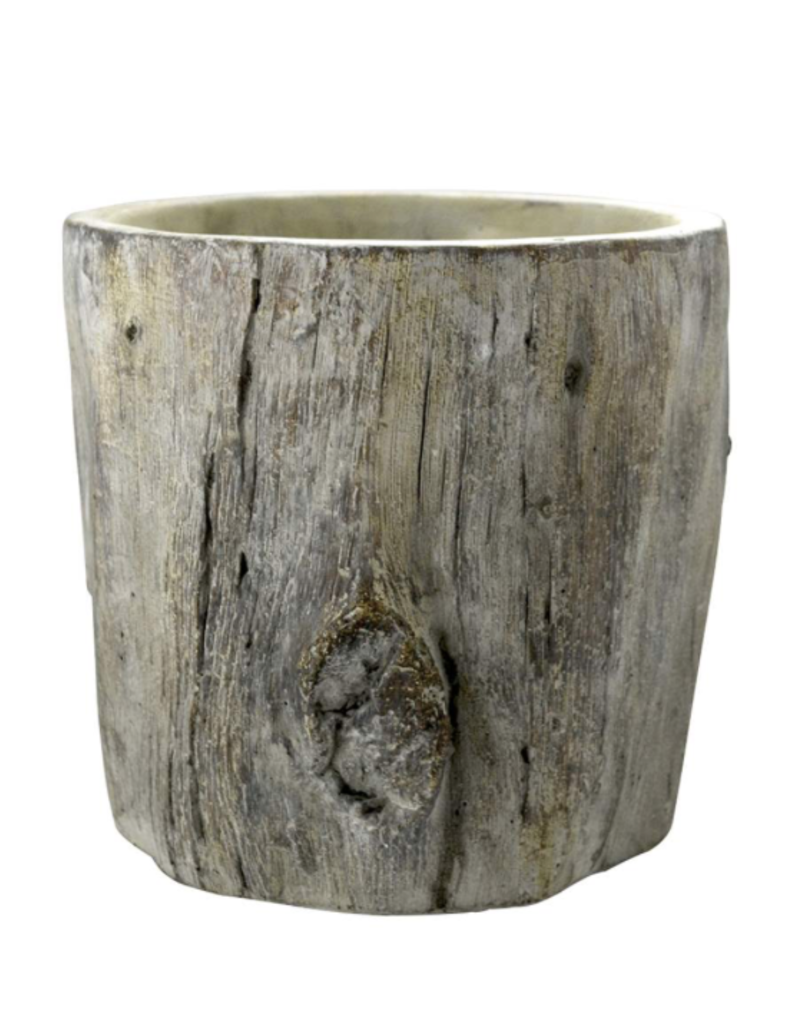 "Vase bouleau moyen 5"" 1/2"