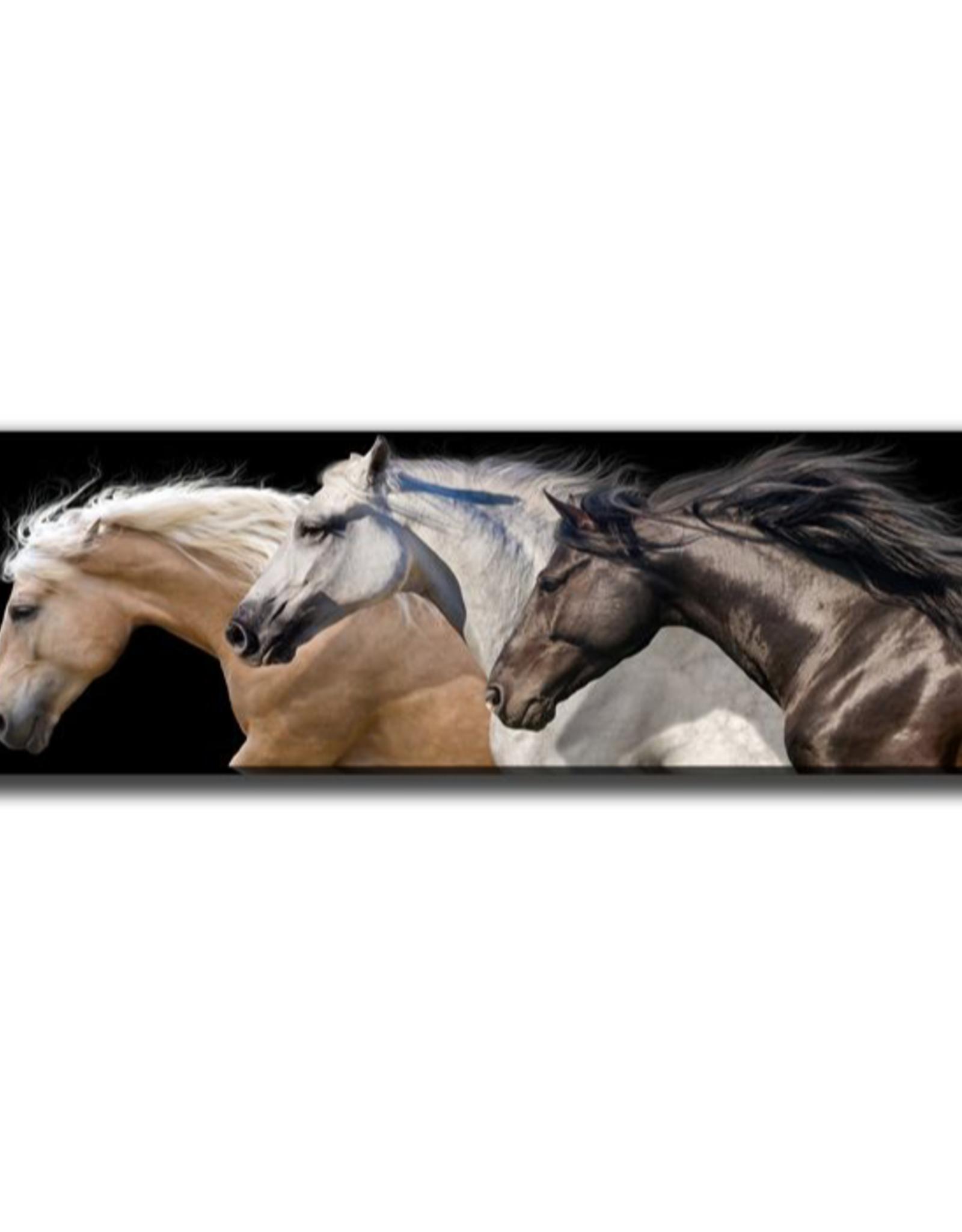 """Toile trio de chevaux 14"""" x 48"""""""