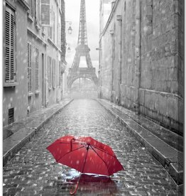 TOILE Eiffel Tower RED 30X45