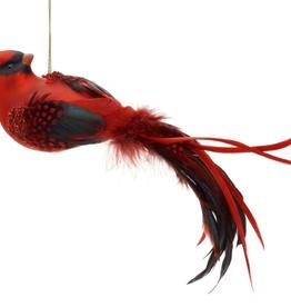 Cardinal en vitre