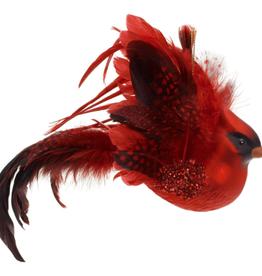 Cardinal en vitre avec plumes