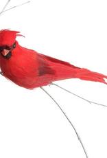 """Oiseau sur clip 5"""""""