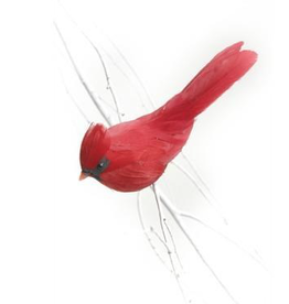 """Cardinal sur clip rouge 4,5"""""""
