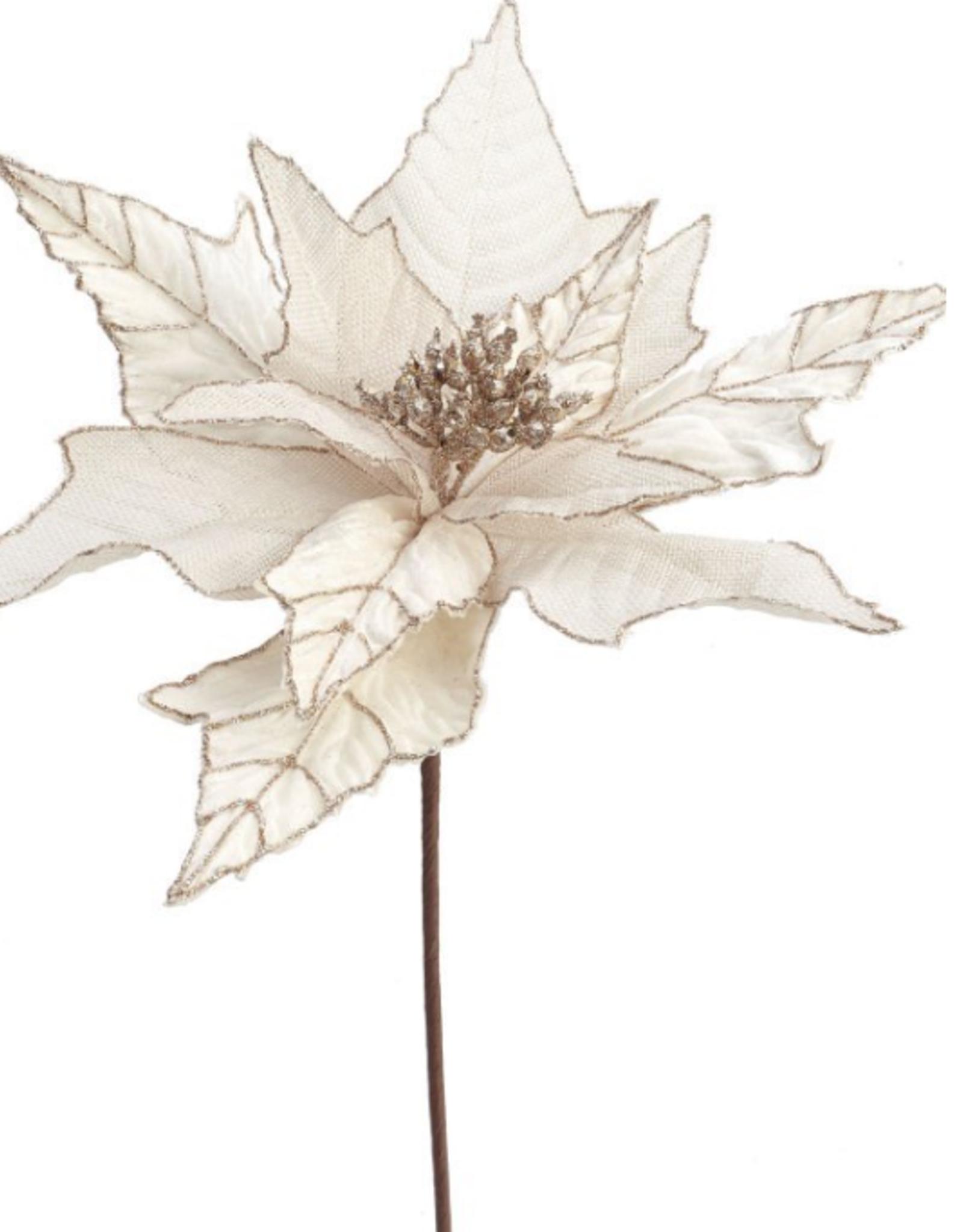 Poinsettia de Noël