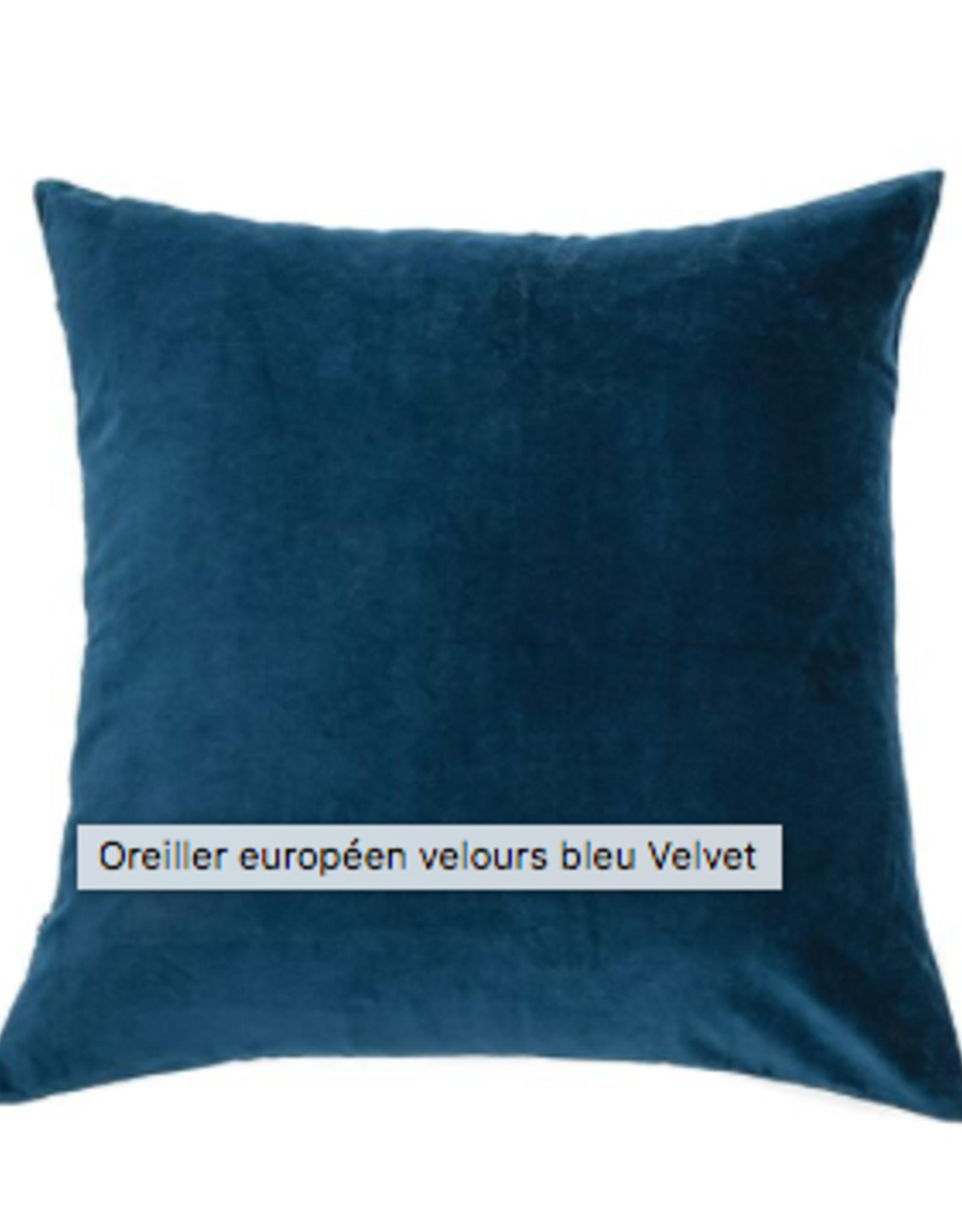 Coussin velvet bleu européen 25X25