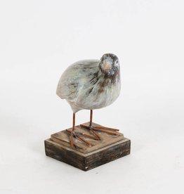 C.J. Marketing Oiseau de table B