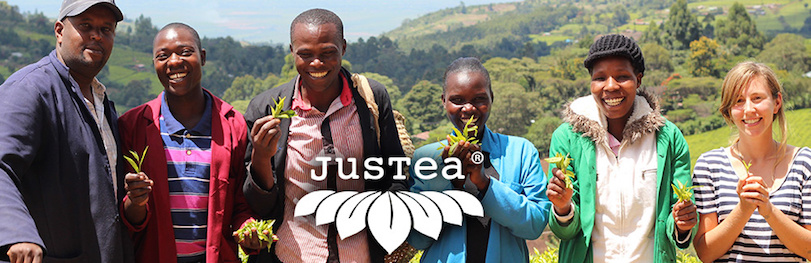 Relax and Unwind with JusTea