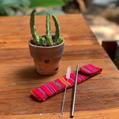 Reusable Straw Kit