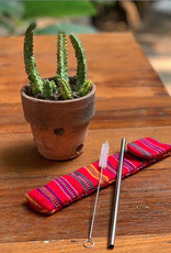 Reusable Straw Kit