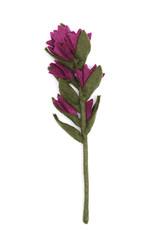 Global Goods Partners Felt Indian Paint Brush Flower