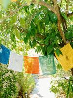 Large Tibetan Prayer Flags