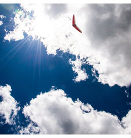 Lookout Mountain Flight Services SOLO AEROTO