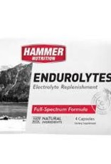 Hammer Nutrition ENDUROLYTE PACKET OF 4