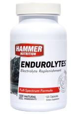 Hammer Nutrition ENDUROLYTES BOTTLE 120 CAPSULE