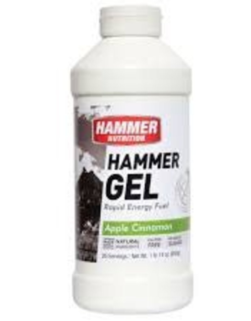Hammer Nutrition HAMMER GEL APP-CIN 26 SERV JUG