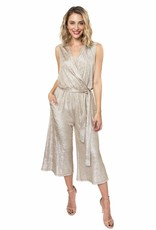 Zoey Metallic Jumpsuit