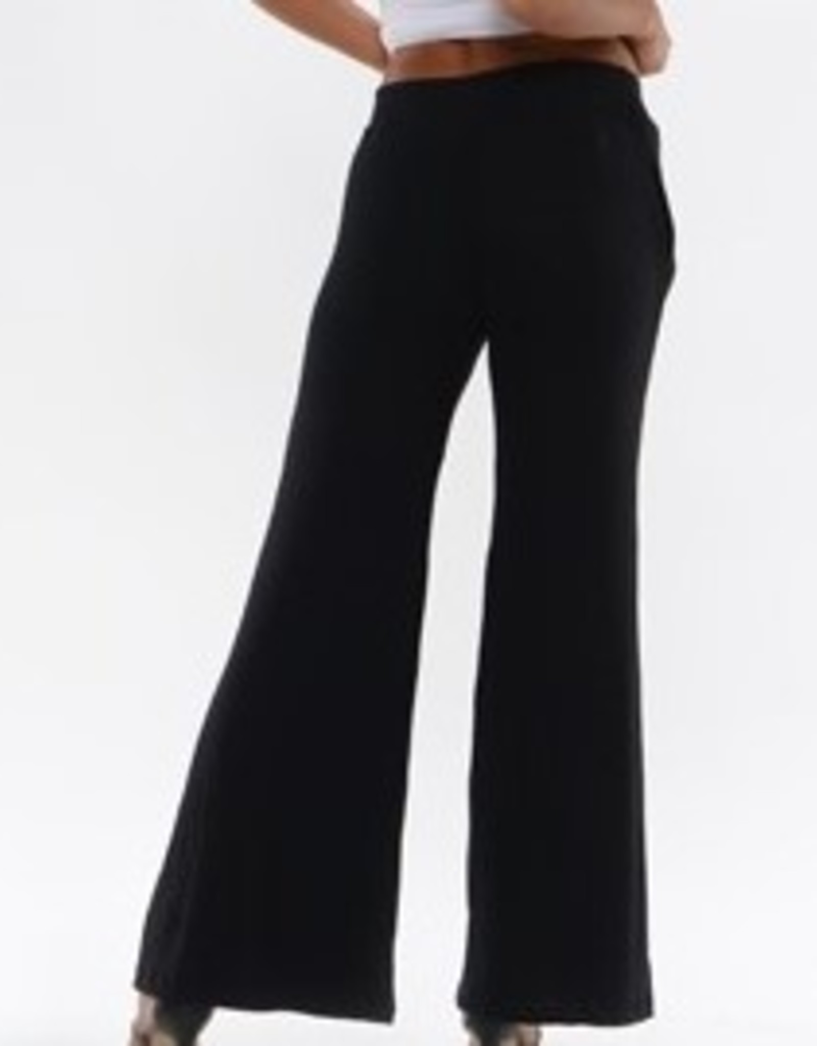 Gabriela Wide Leg Pants