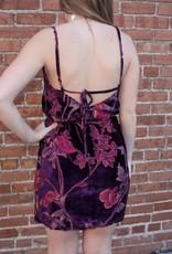 Wild Honey Floral Velvet Dress
