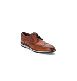 Lloyd Shoes - Daily - *More Colors