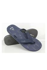 TM Flip Flops