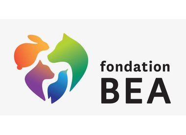 Fondation BEA