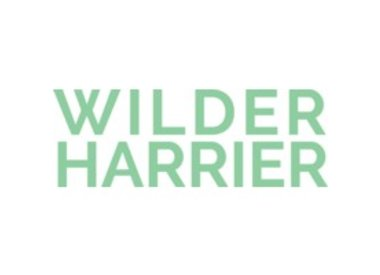 WILDER HARRIER