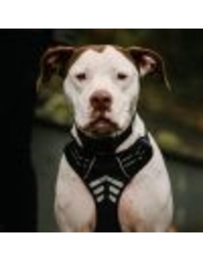 Le chien blanc Harnais MOE