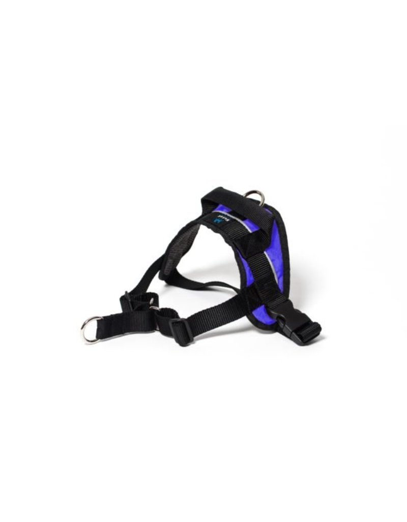 Nahak Walking harness