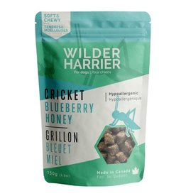 WILDER HARRIER WILDER H. CHIEN TENDRE GRILLON