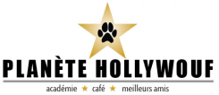 Online store of dog food and accessories