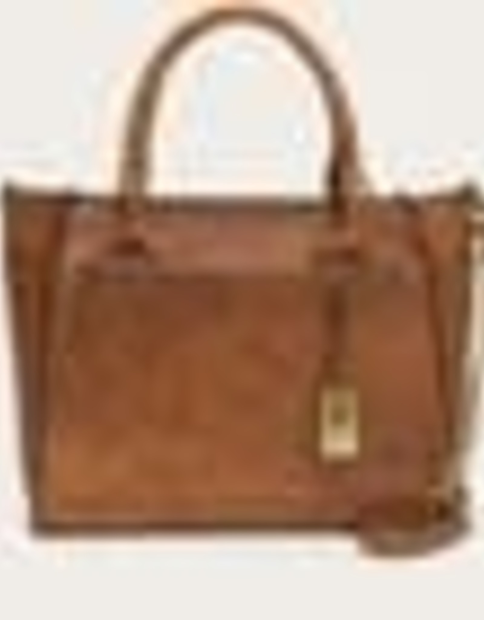 Frye- Demi Satchel