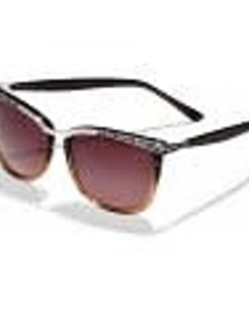 Brighton Brighton Sunglasses-La Scala Fade-Brown