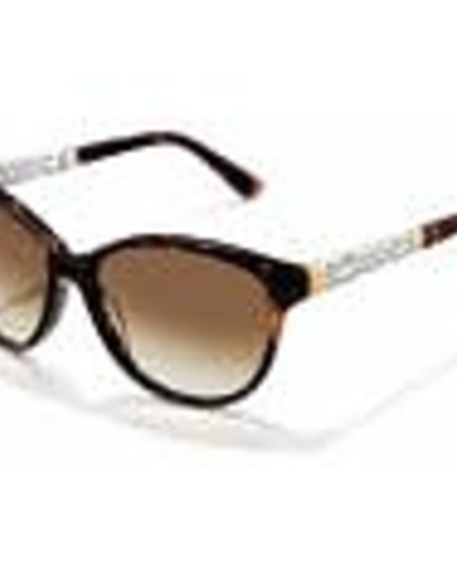 Brighton Brighton Sunglasses-Mamma Mia-Tortoise