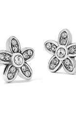 Brighton Brighton Earrings Baroness Fiori Mini Post Silver