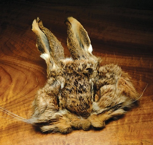 Hare's Mask Natural